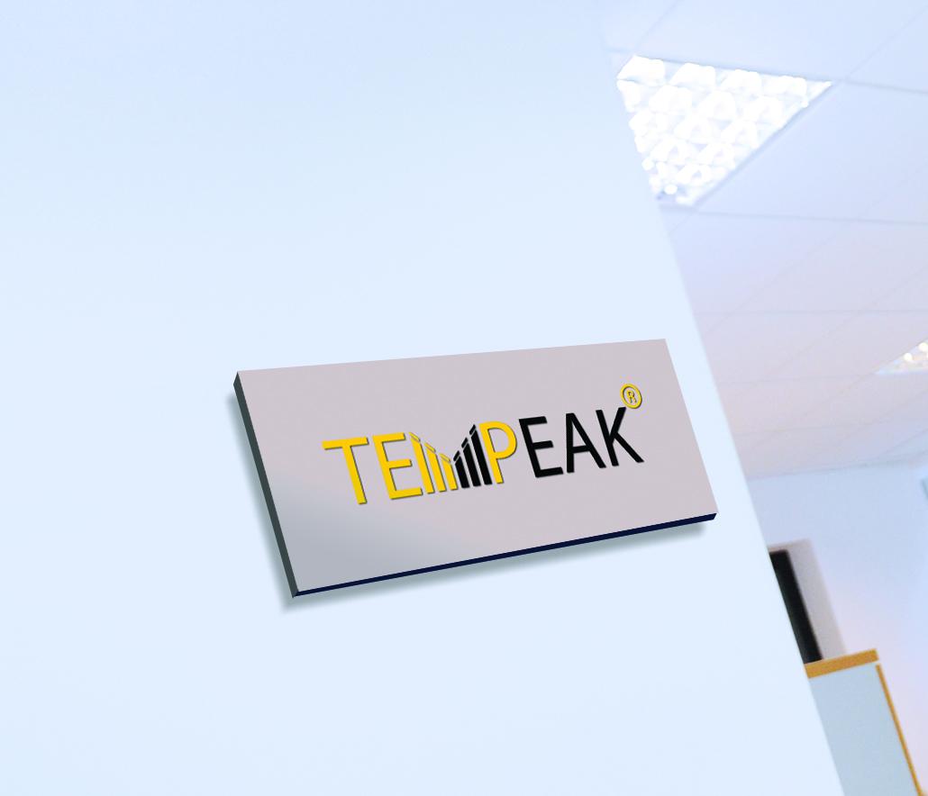 Брендбук для компанії Tempeak