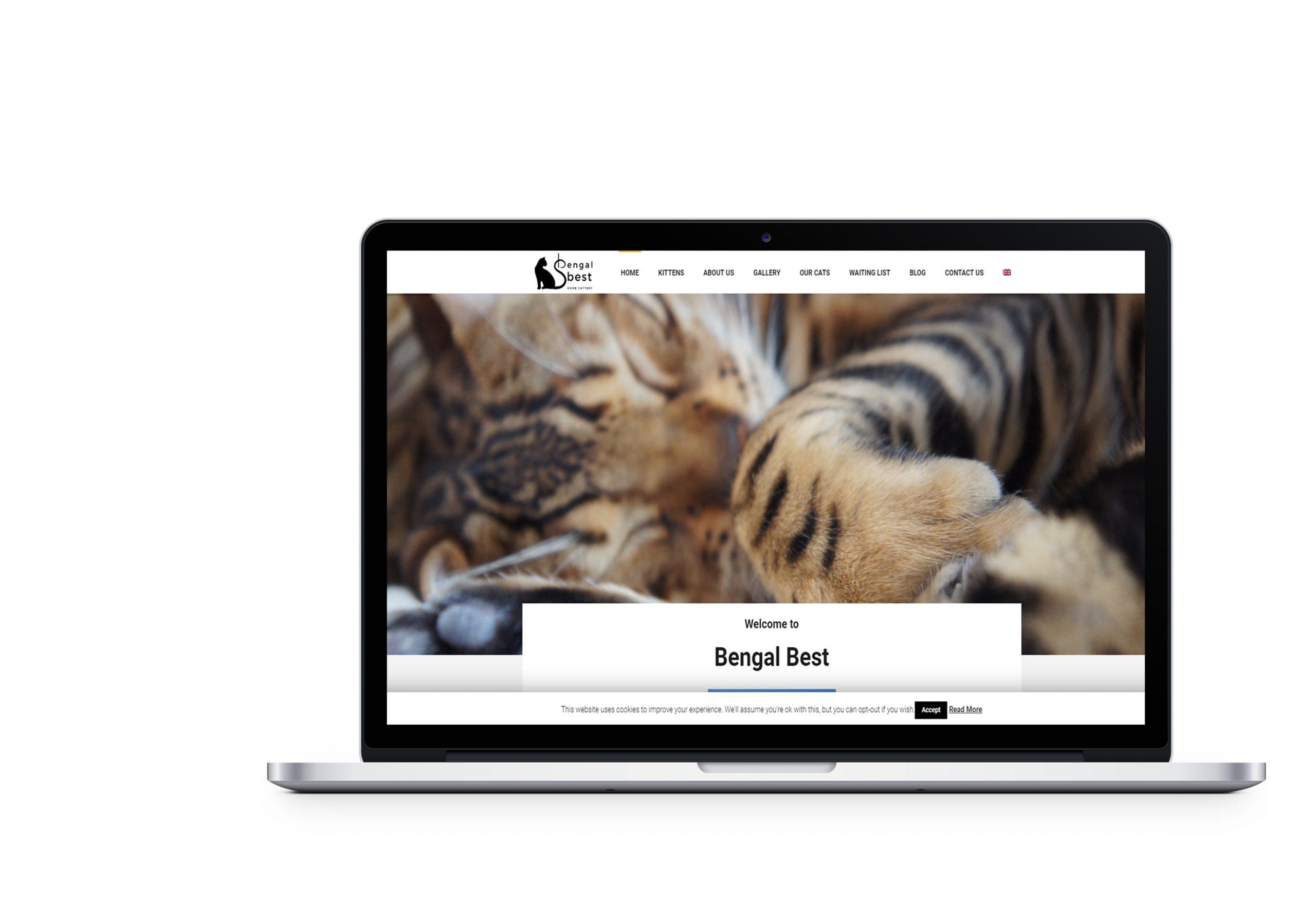 Редизайн вебсайту для Bengal Best